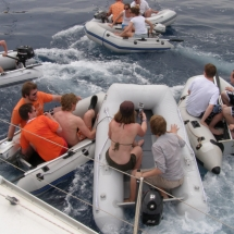 dinghy-race-split-2012-36